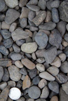 Oregon River Pebble